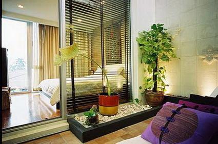 decorar-con-plantas-3